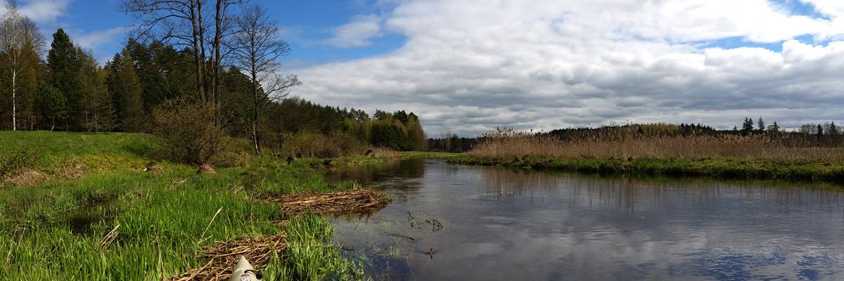 Spływ kajakowy rzeką Sokołdą - Puszcza Knyszyńska | www.puszczaknyszynska.com.pl