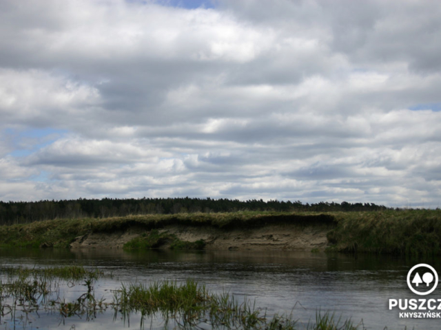 Okolice miejscowości Dąbrówki 53.206641, 23.265460   Rzeka Supraśl - Puszcza Knyszyńska