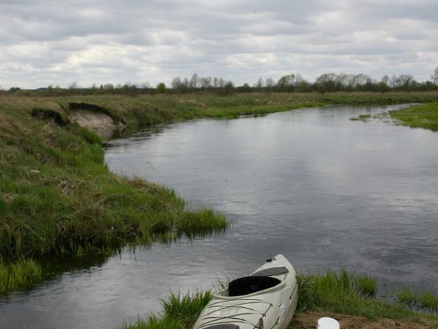 Okolice miejscowości Dąbrówki 53.206641, 23.265460 | Rzeka Supraśl - Puszcza Knyszyńska