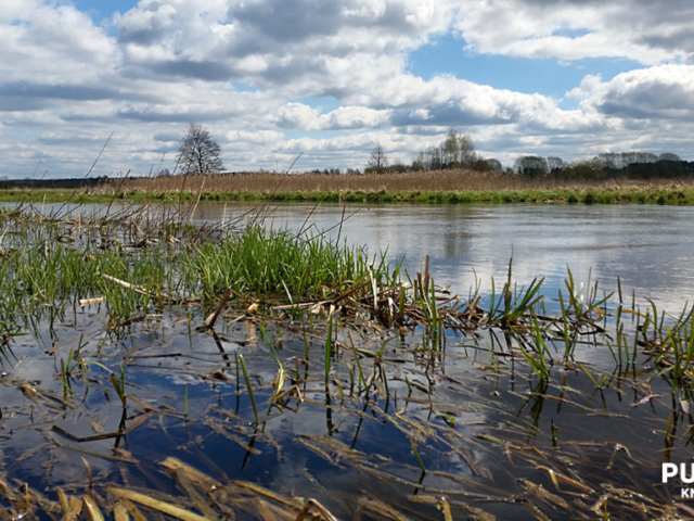 Okolice miejscowości Nowodworce   Rzeka Supraśl - Puszcza Knyszyńska