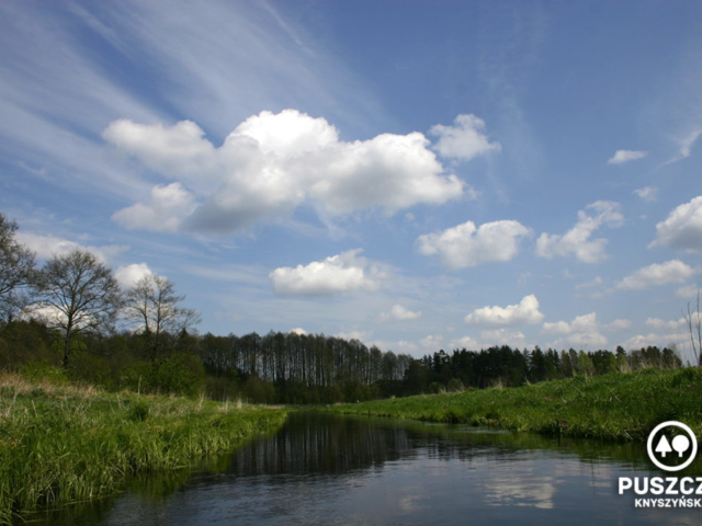 Okolice Gródka | Rzeka Supraśl - Puszcza Knyszyńska