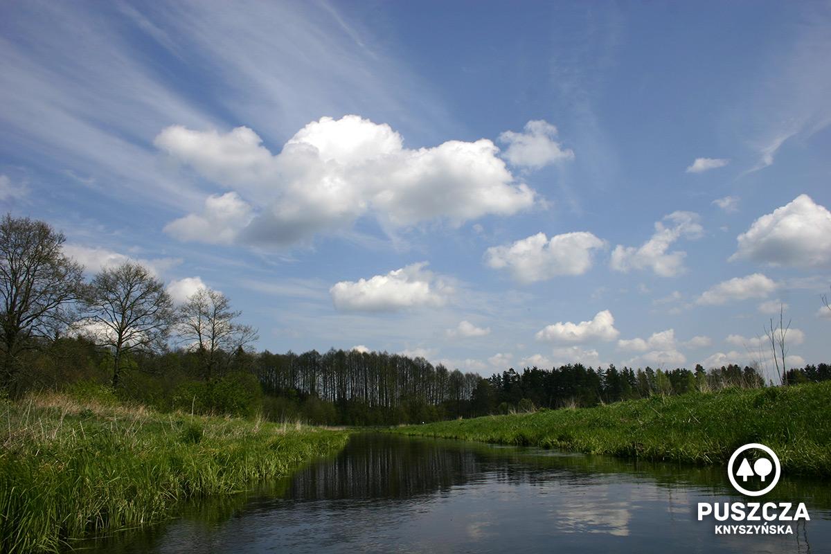 Okolice Gródka   Rzeka Supraśl - Puszcza Knyszyńska